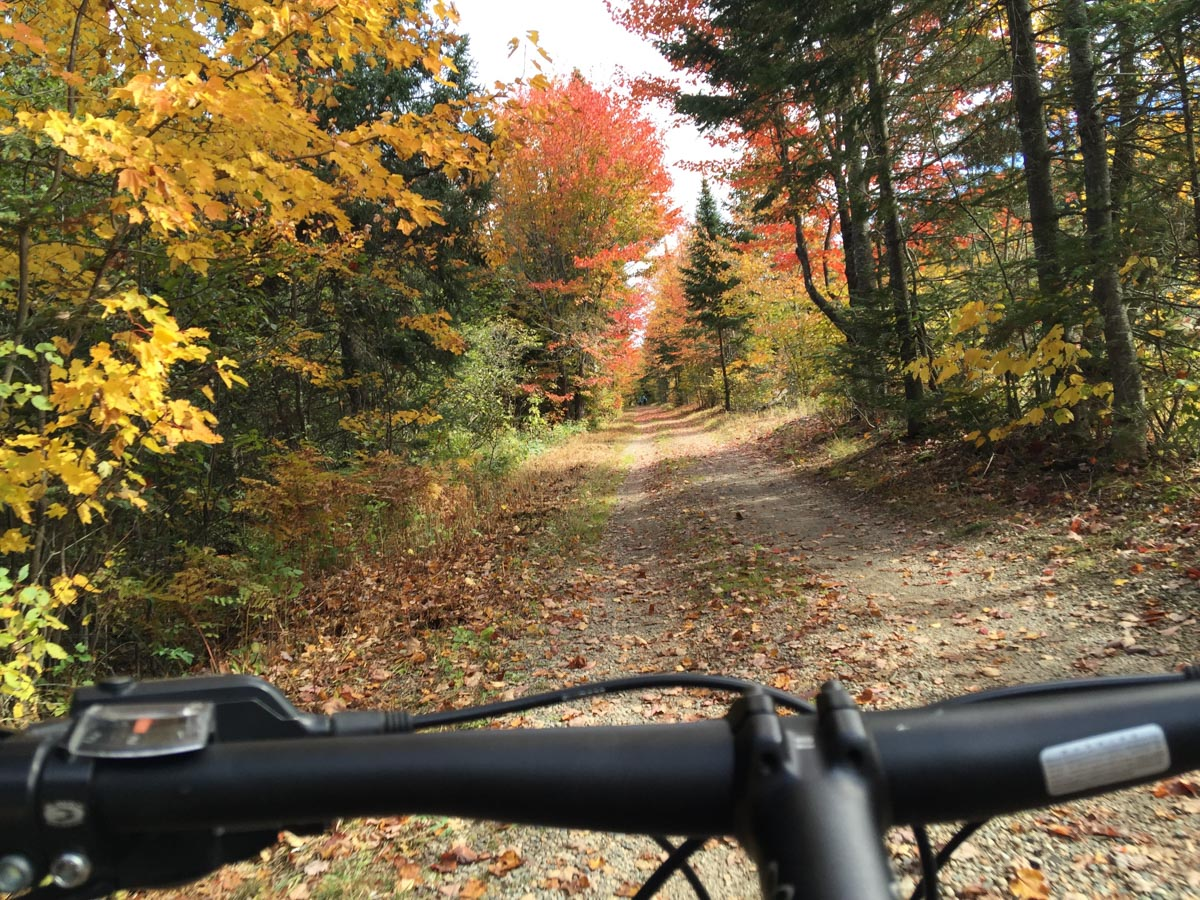 Algonquin Mountain Bike