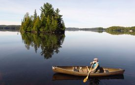 Guided Algonquin Park Canoe Trip