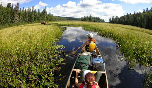 Canoeing FAQ