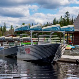 Algonquin Park Lake Opeongo Water Taxi