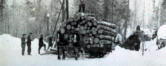 Loggers Day @ Algonquin Park Logging Museum | Ontario | Canada