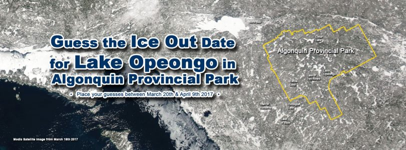 Algonquin Park Ice Out Contest