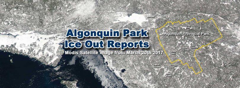Algonquin Park Ice Out Report March 20 2017