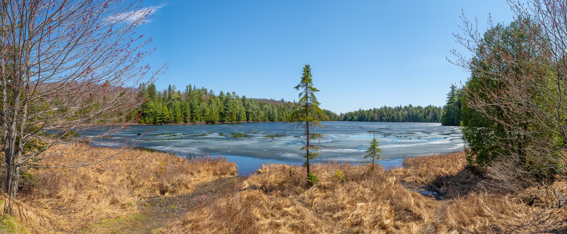 Found Lake (Art Gallery)