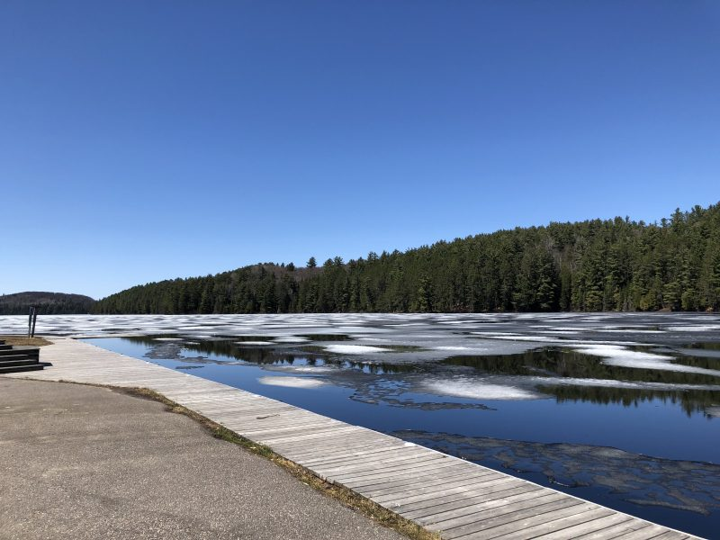 Opeongo Ice Out, May 7 2018