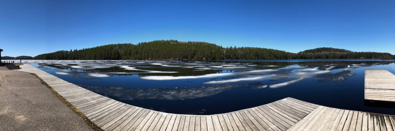 Lake Opeongo boardwalk, May 7th 2018
