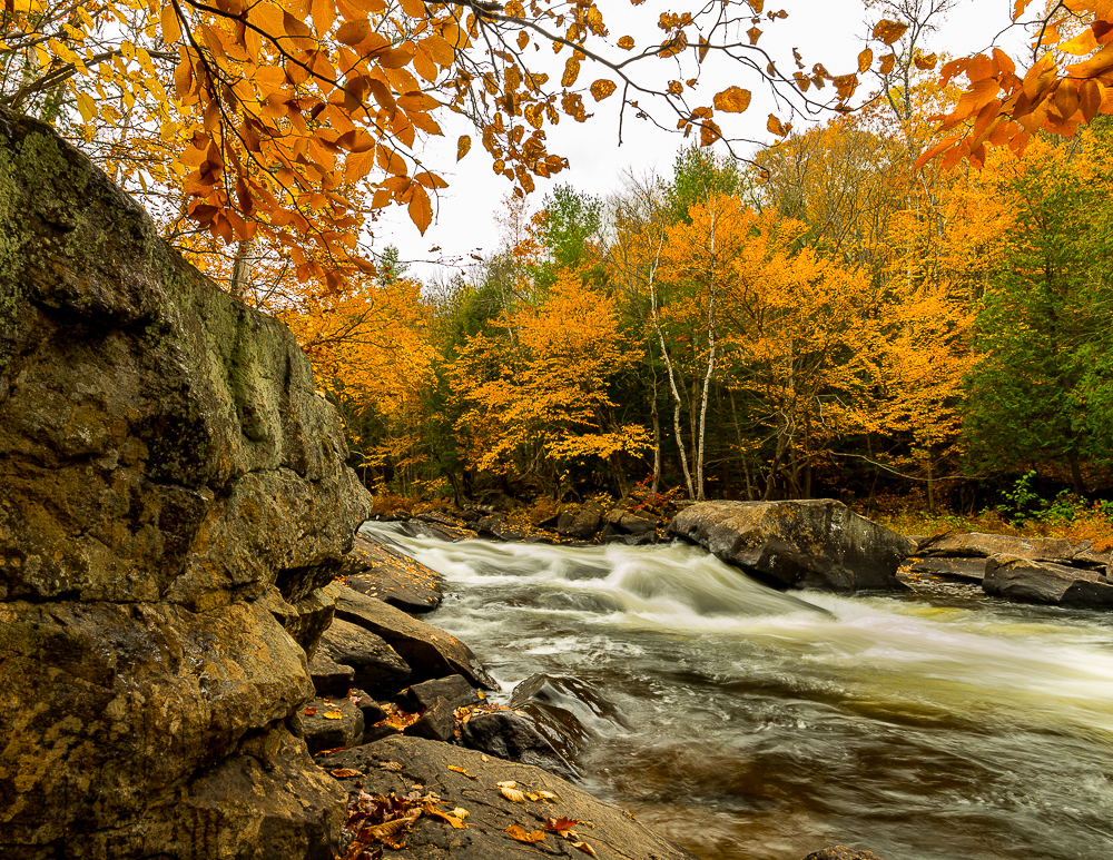 Terry Lupton - Fall on the Oxtongue River