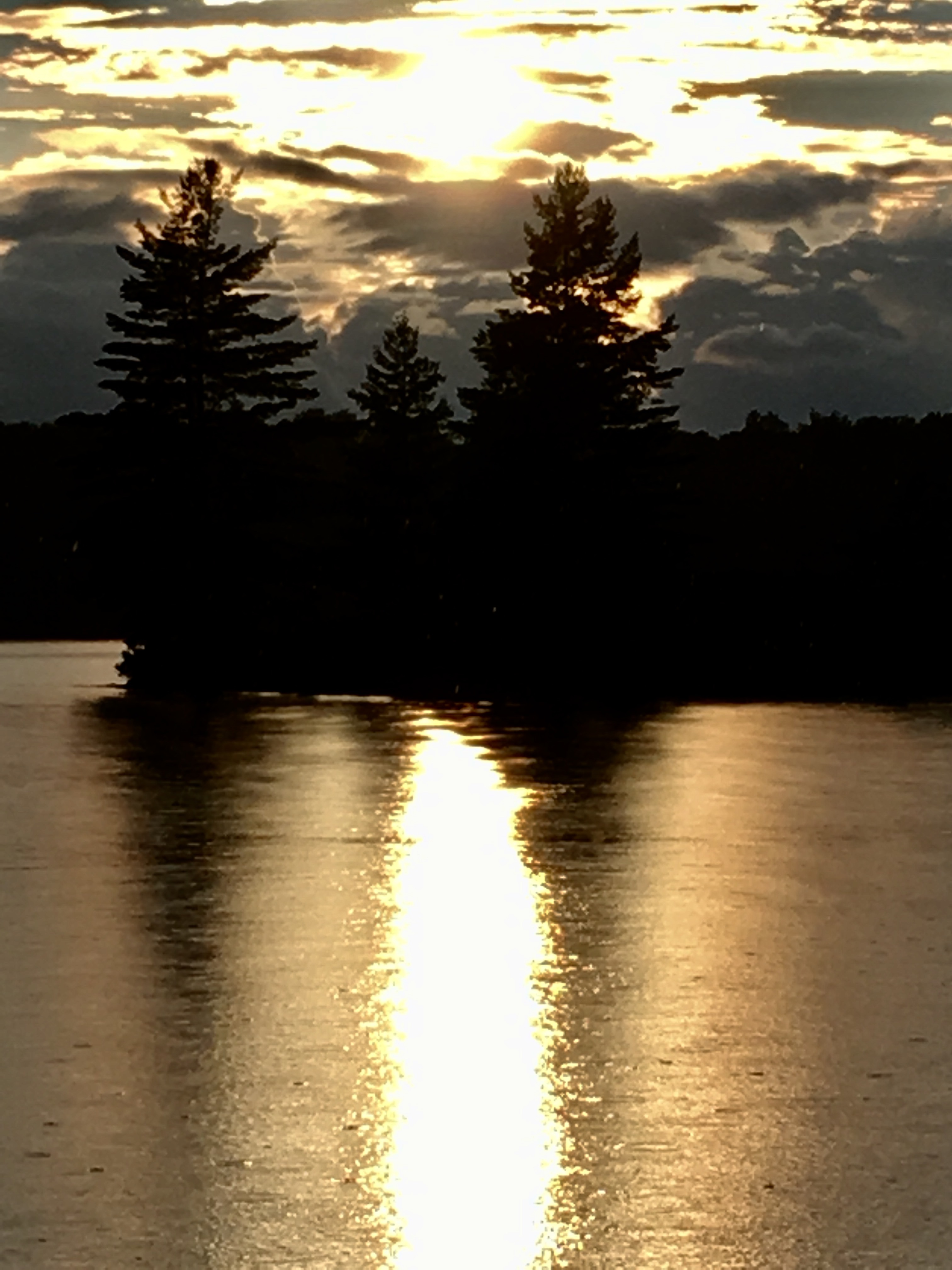 Tara Lisoy - Late Summer Sunset