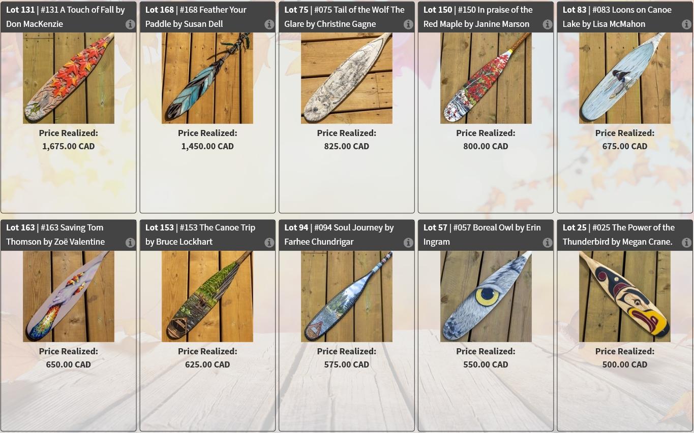 Top ten art paddles