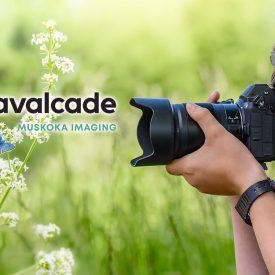Cavalcade Monthly Photo Contest