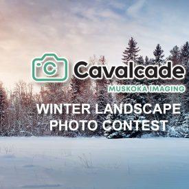 December Winter Landscape Photo Contest