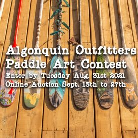 Paddle Art Contest 2020-2021